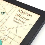 Picture of Madison Topographical Map Wall Art