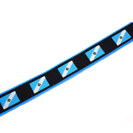 Picture of Madison Flag Dog Leash