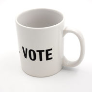 I Will Vote Mug